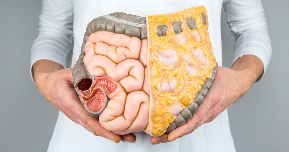 Les 10 commandements d'un système digestif sain - salutbonjour.ca